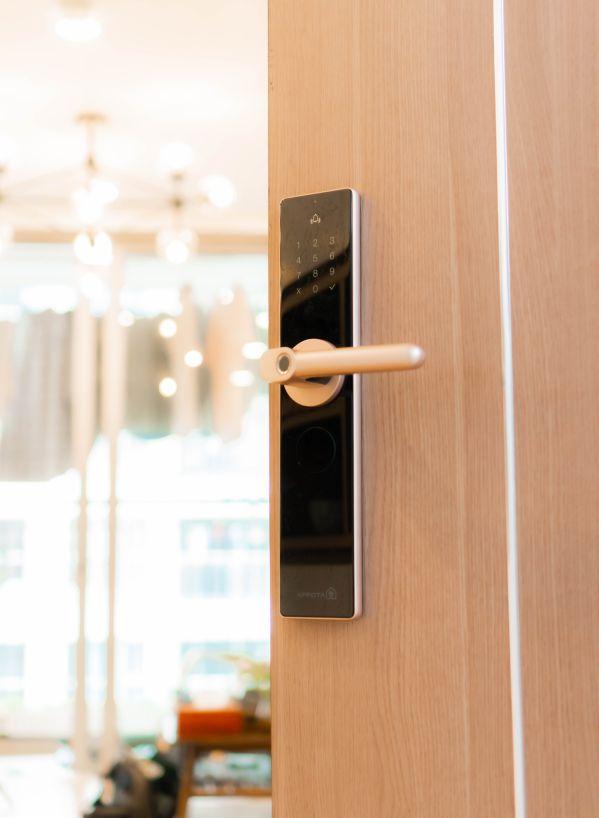 Khóa cửa cảm ứng bằng vân tay có ưu điểm gì? Khóa nào tốt nhất? 2