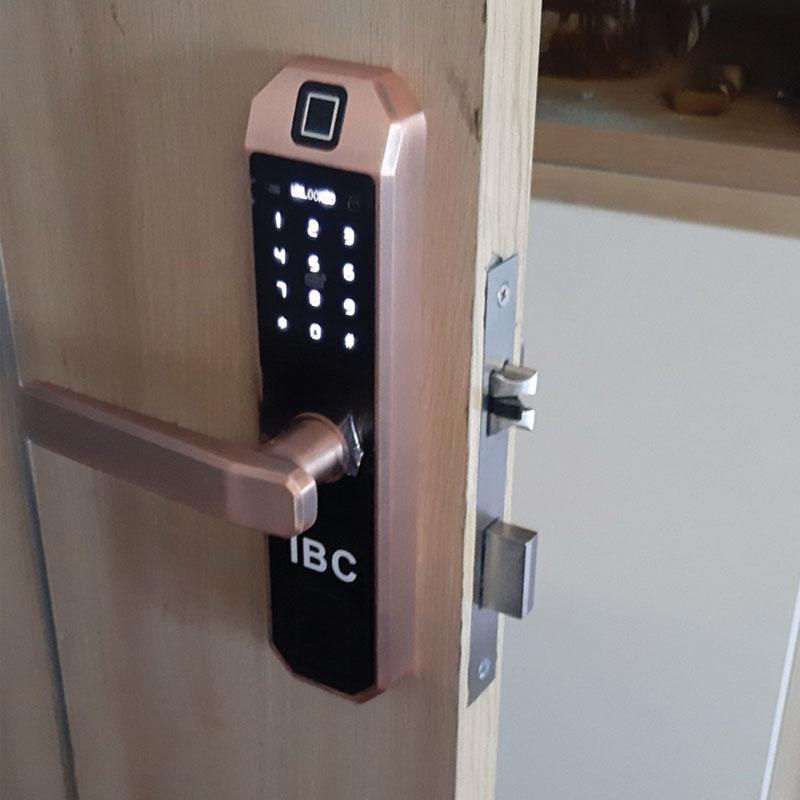 Khóa cửa cảm ứng loại nào tốt? Mua giá bao nhiêu là hợp lý? (4)